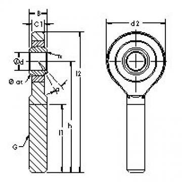 AST SAZP25S plain bearings