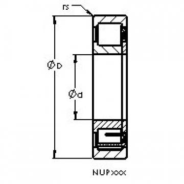 AST NUP224 cylindrical roller bearings
