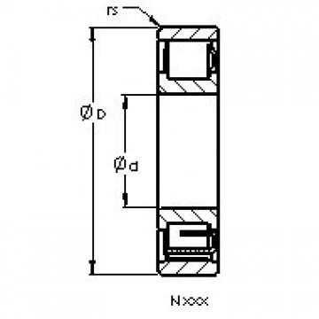 AST N424 M cylindrical roller bearings